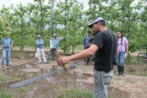 Fruticultura (3)