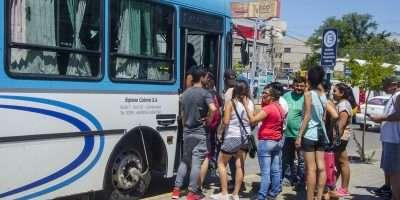 Provincia habilitará un servicio de transporte diferencial que unirá Neuquén y Centenario